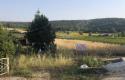 Bozüyük Kızılcapınar Köyünde Satılık 5. 204 m2 Arazi